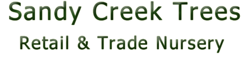 Sandy Creek Trees Retail and Trade Nursery
