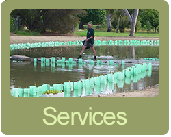 planting and design services